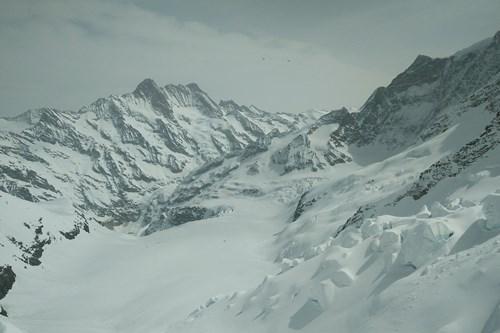 Grindelwald skiing