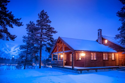 geilolia cabins night view in forest