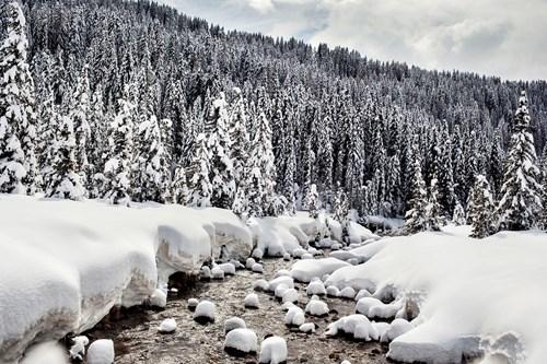 stream through the snow Madonna di Campiglio ski resort, Italy