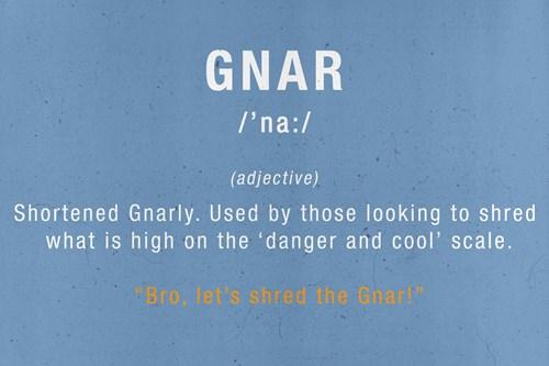 ski slang terms - gnar