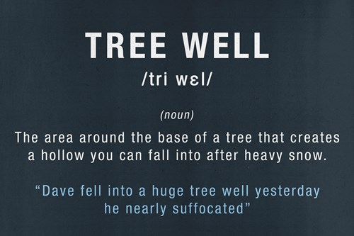 defining the ski terms and jargon talk - tree well