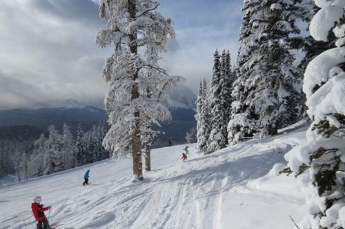 Ski-lake-louise4.JPG