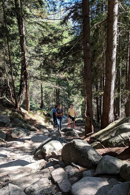 Madonna-di-Campiglio-Italy-mountain-hike