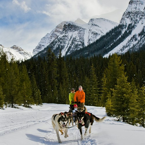 Dog_Sledding_Lake_Louise_Paul_Zizka_3_Vertical.jpg