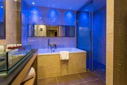 Taj-i-Mah-Les-Arcs-bathroom.jpg