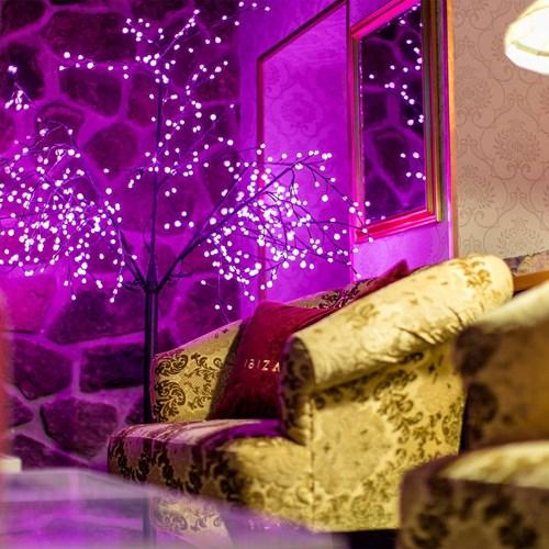 Hotel Ibiza Les Deux Alpes bar chairs.jpg