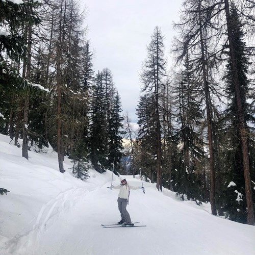 woman on ski slopes winter trees