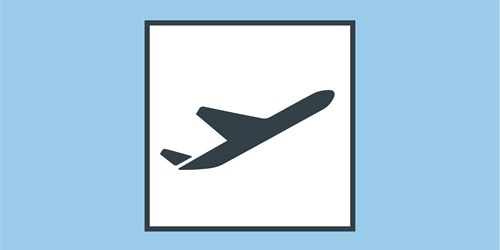 In-Safe-Hands-Icon-Plane.jpg