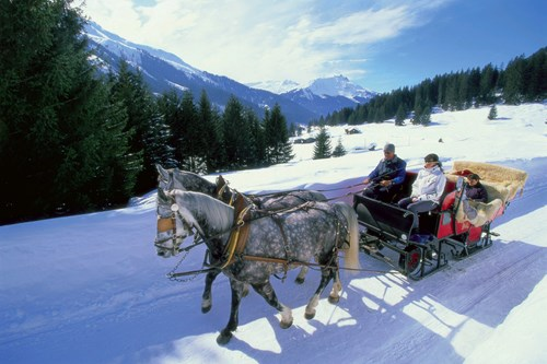 Horse-drawn-cart-in-klosters