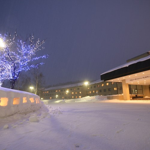 Niseko northern resort-Ski Japan-exterior in heavy snow