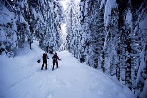 Chamonix-Ski-Resort-France (24).jpg