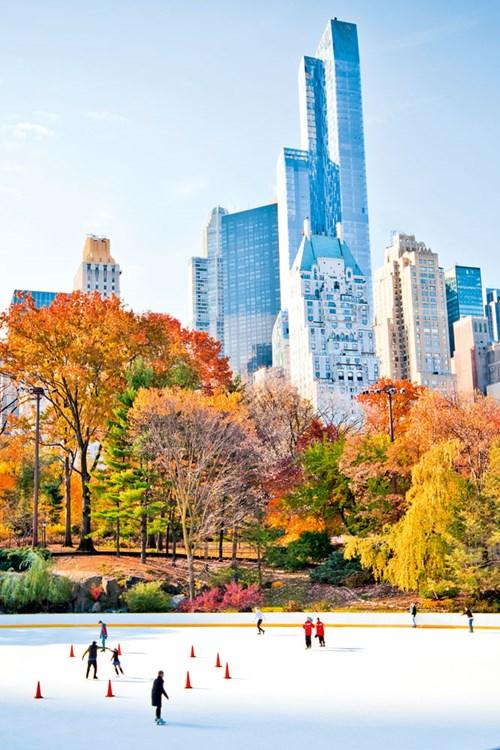 New-York-ice-sating-in-central-park.jpg