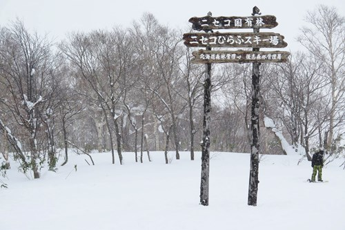 ski signs in niseko - skiing in Japan