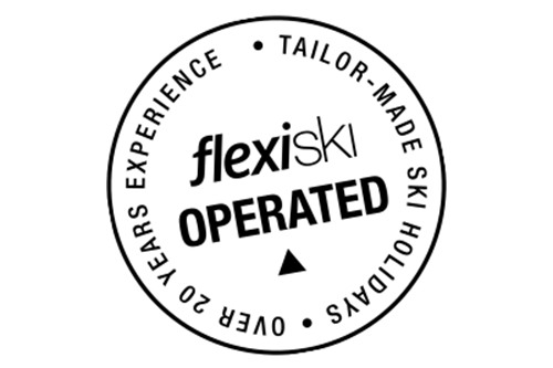 flexiski operated logo