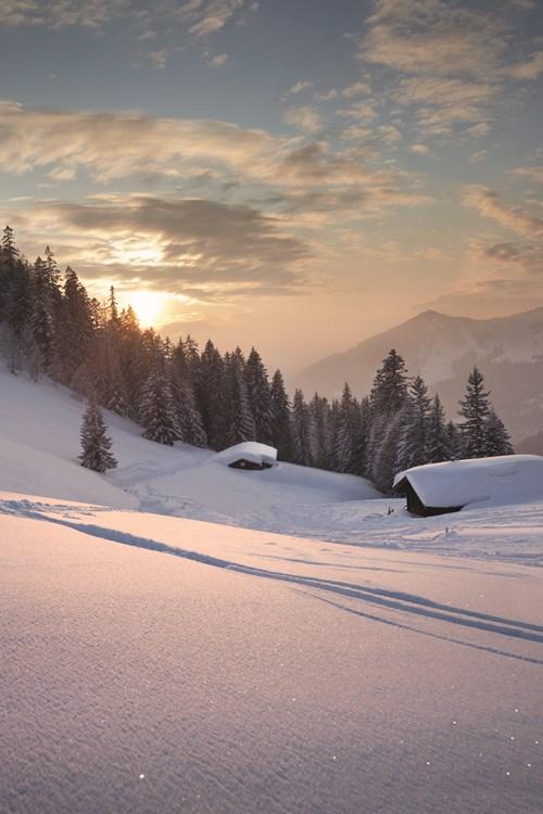 Snowy-tracks-to-the-cabin.jpg