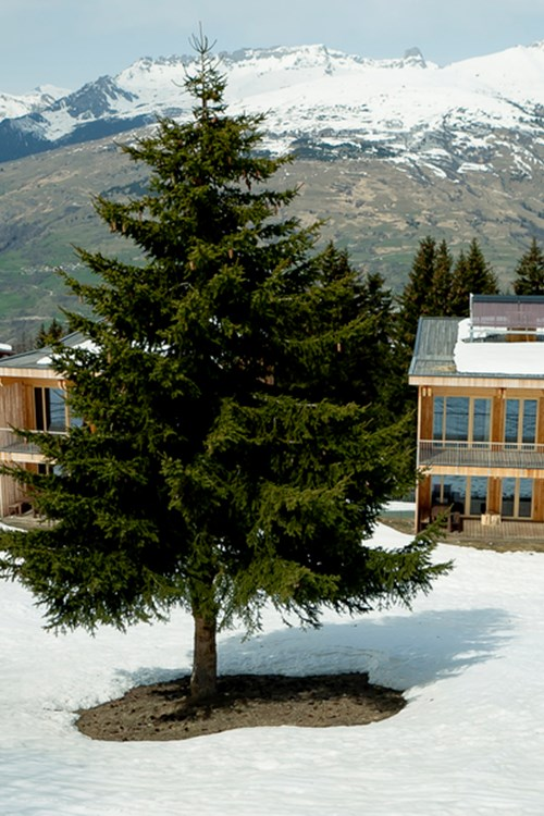 ski in, ski out hotel in Les Arcs, Aiguille Grive Hotel - chalets in snow