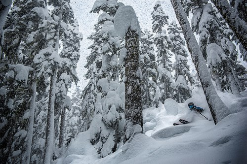 Whistler, largest ski area in North America