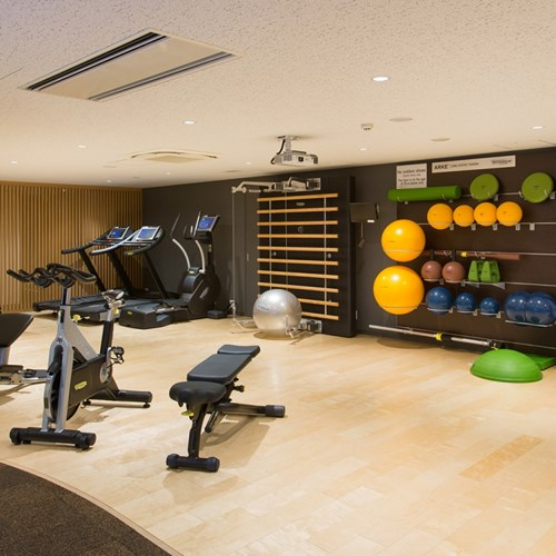 Ski Hotel Chalet Ivy-Niseko-Ski Japan-gym room