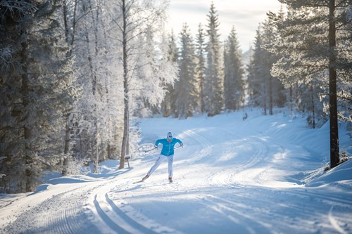 Trysil cross country skiing
