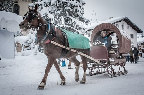 horse sled megeve