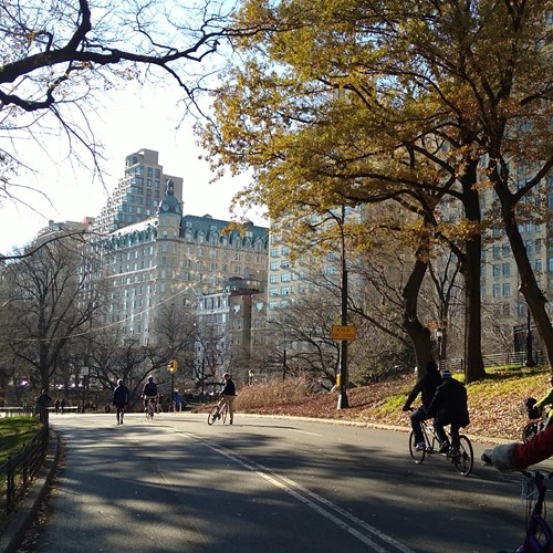 New York twin centre, cycle central park