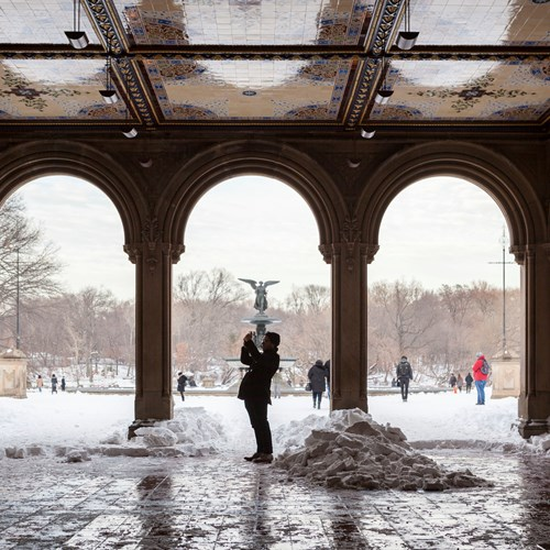 Central Park, New York multi centre