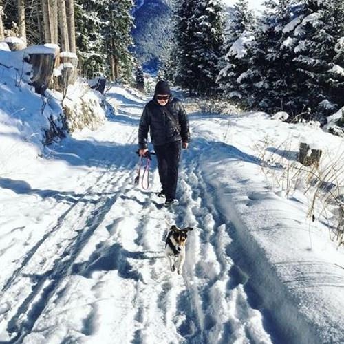 Klosters, fresh snowfall
