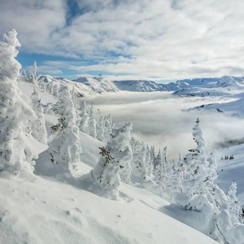 whistler, snowy snow report