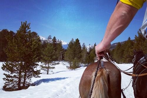 Horse drawn ski lift