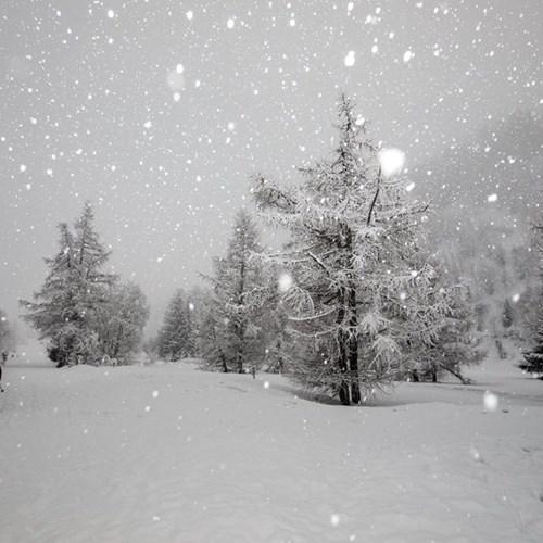snow in courmayeur