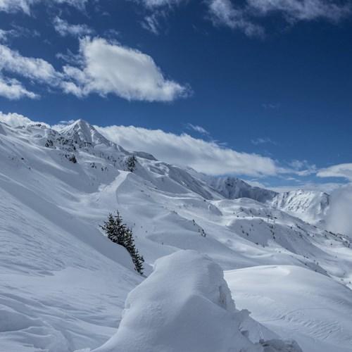 snow in Les Arcs