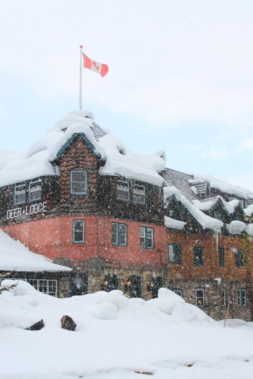 Deer Lodge-Lake Louise-exterior snow.JPG