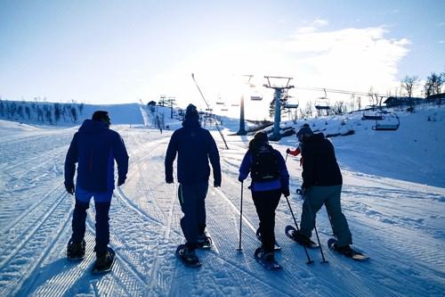 Snowshoeing in Geilo, Norway